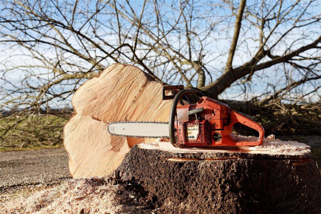 service Обрезка деревьев